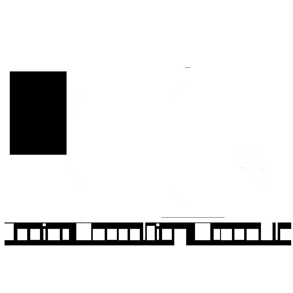 Junior Consulting Grenoble